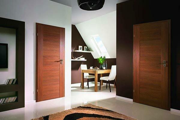 dveri-interier